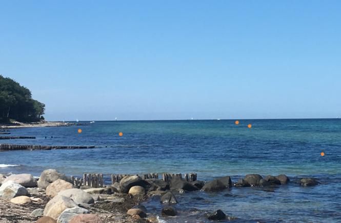 Snorkelrute ved Hornbæk Plantage