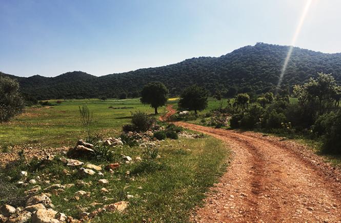 Vejen imellem to bjerge på Lykia Road