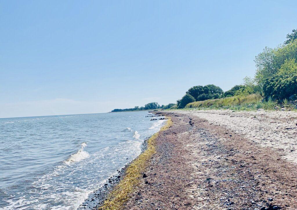 Stranden ved Ulvshale helt øde