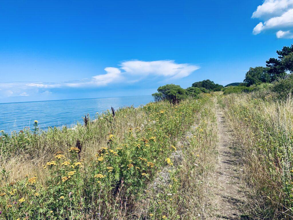 Strandsti med udsigt over havet